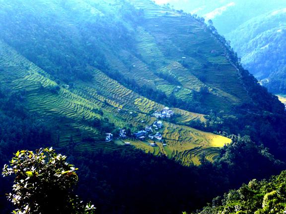 Nepal Hillside
